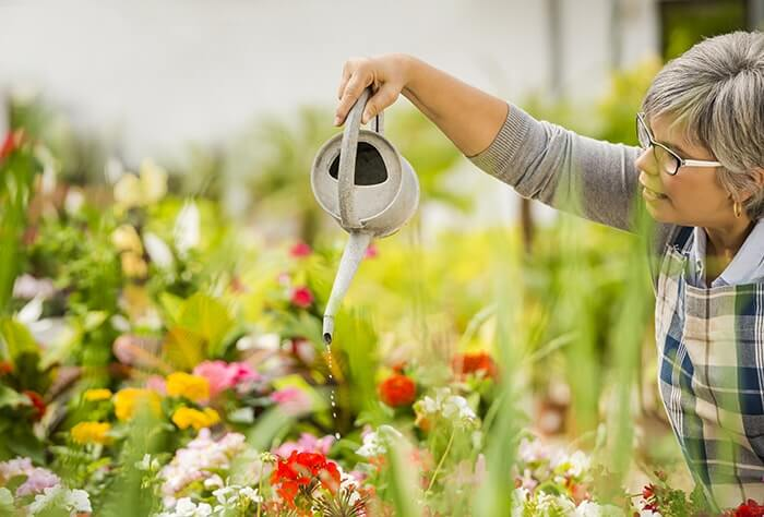 mature woman watering flowers P97RZ6Q